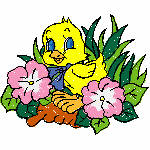 Easter basket-3600004-ibroidery-Chick